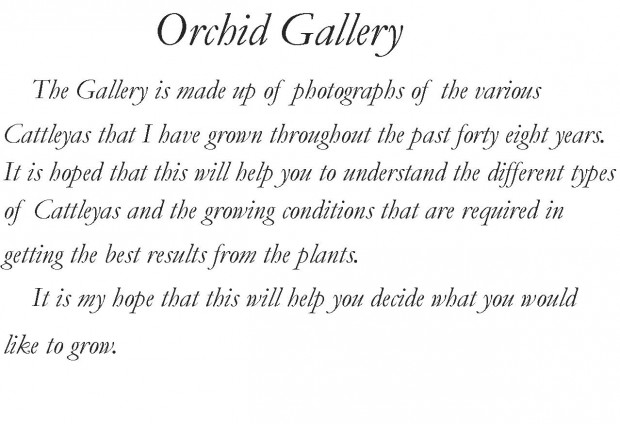 Front Gallery Info