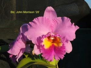 Blc. John Morrison '28'