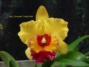 Rsc. Chunyeah 'Tzeng Wen'