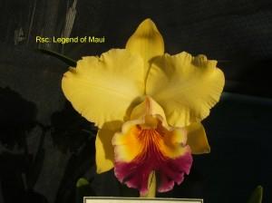 Rsc. Legend of Maui